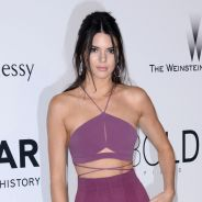 Kendall Jenner, Irina Shayk, Adriana Lima... défilé de bombes pour le gala amfAR à Cannes