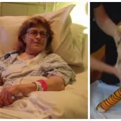 Sans son chien, cette femme serait probablement morte : une histoire incroyable