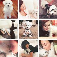 """Demi Lovato de retour sur Instagram après le drame : """"La semaine la plus douloureuse de ma vie"""""""
