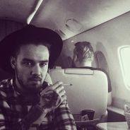 Liam Payne dévoile sa résolution pour 2016 : ses fans l'encouragent sur Twitter