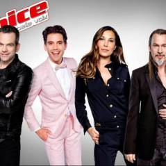 "The Voice 5 : ""pas content"", Florent Pagny a failli abandonner l'émission"