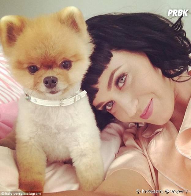 Jiffpom prend la pose avec Katy Perry.