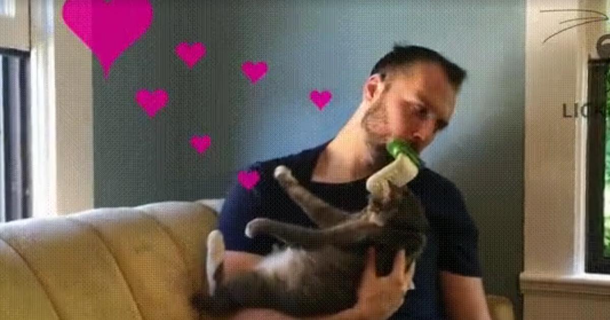 photo lécher la chatte