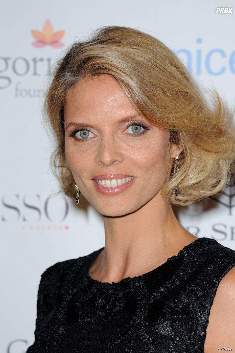 Danse avec les Stars 7 : Sylvie Tellier au programme ?