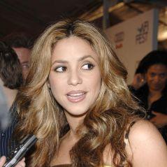 Shakira, la photo fail ? Mais quel est cet objet qui choque la Toile ? 🍆