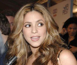 Shakira : Une photo d'elle affole la Toile !