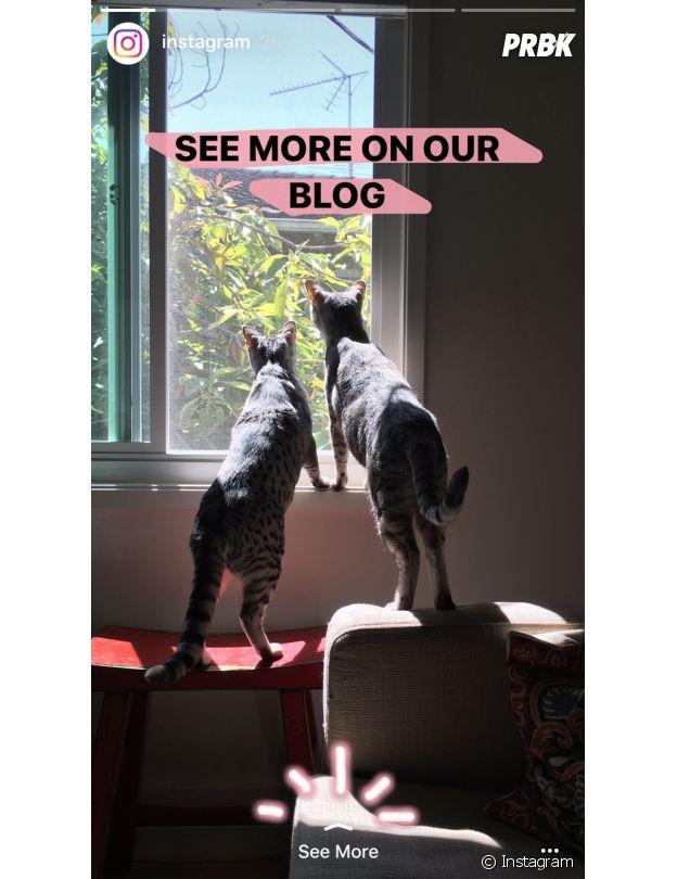Instagram Stories : see more débarque pour permettre d'envoyer vers une page web
