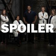 Grey's Anatomy saison 13 : un nouveau bébé en approche ? La théorie étonnante