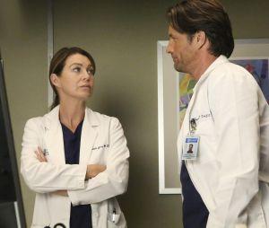Grey's Anatomy saison 13 : Meredith et Riggs bientôt parents ?