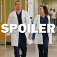 Grey's Anatomy saison 14 : Owen et Amelia vont-ils se séparer ?