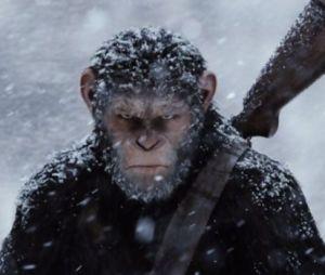 Andy Serkis en interview pour le DVD/Blu-Ray de la Planète des Singes Suprématie.