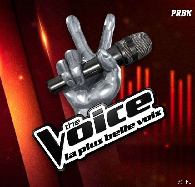 The Voice 7 : auditions à l'aveugle, arrivée de Pascal Obispo... on a vu le 1er épisode