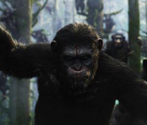 La Planète des singes l'affrontement : quels acteurs se cachent derrière César, Koba et les autres ?