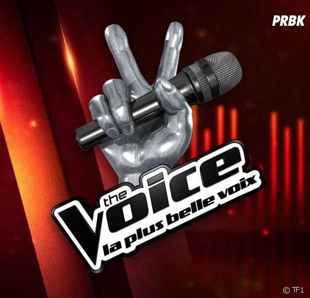 """The Voice : une candidate virée par la psy de l'émission pour """"raisons médicales"""""""