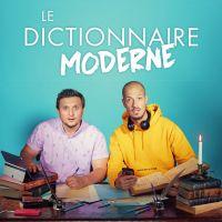 """McFly et Carlito sortent le livre """"Le dictionnaire moderne"""", un """"Wikipédia avec de l'humour"""""""