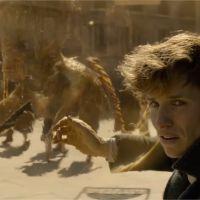Les Animaux Fantastiques 2 : Grindelwald sème le chaos, Nagini se dévoile dans le trailer