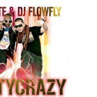 Flowfly et Vybrate vont vous faire bouger avec Party Crazy (vidéo)