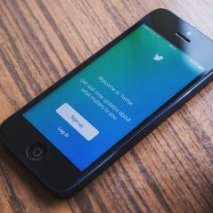 Twitter continue sa guerre contre les trolls et va afficher les profils injurieux et haineux