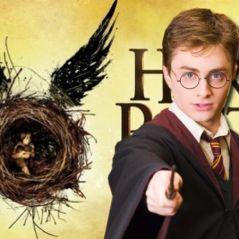 Harry Potter et l'Enfant Maudit : voici pourquoi Daniel Radcliffe refuse de voir la pièce de théâtre