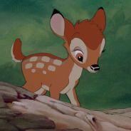Un braconnier condamné par un juge à regarder Bambi... tous les mois