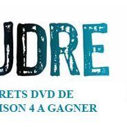 Concours ... 10 coffrets DVD de Foudre saison 4 à gagner