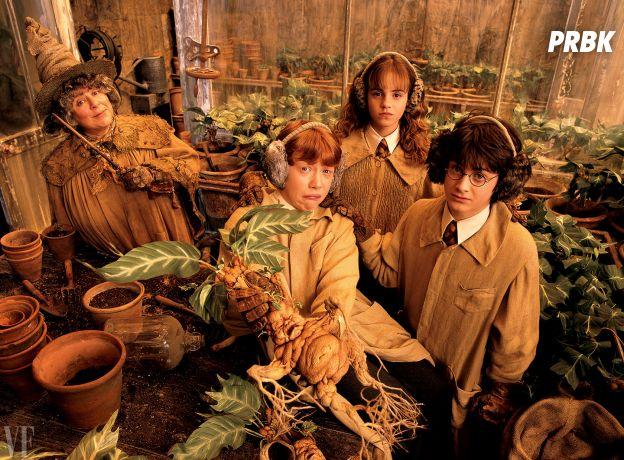 Harry Potter : une ex-professeur de Poudlard affirme... ne pas aimer les enfants