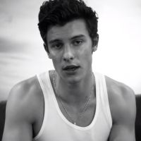 "Clip ""If I Can't Have You"" : Shawn Mendes en pleine rupture amoureuse"