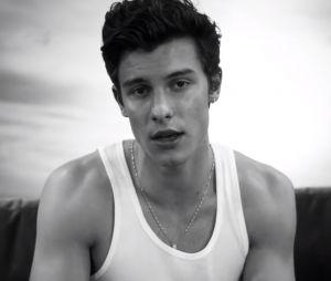"""Shawn Mendes de retour avec le clip de """"If I Can't Have You"""" !"""