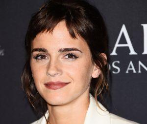 Emma Watson en couple avec le frère d'Alicia Keys ? Ils ont été vus en date à New York