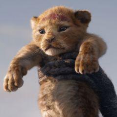 Le Roi Lion : Rayanne Bensetti en Simba, Jamel Debbouze en Timon... les voix françaises dévoilées