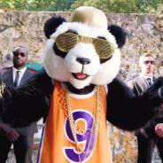 Mask Singer : quelle célébrité est le panda ? Les indices qui dévoilent son identité