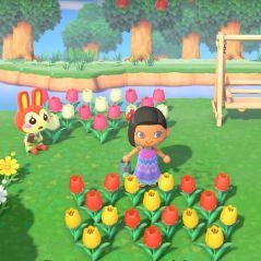 Animal Crossing: New Horizons : Nintendo dévoile toutes les nouveautés du jeu