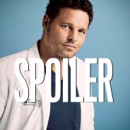 Grey's Anatomy saison 16 : les raisons du départ d'Alex dévoilées dans l'épisode 16