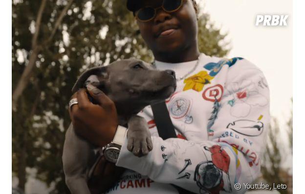 Leto accusé de maltraitance animale : le chien du rappeur aurait été placé dans un refuge