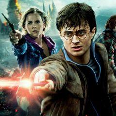 Harry Potter : la vraie baguette d'Harry, une lettre pour Poudlard... Les objets cultes aux enchères