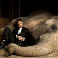 Robert Pattinson ... Bientôt sur MTV pour la promo de Water for Elephants (VIDEO)