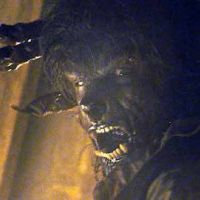 Wolfman 2 ... Directement en DVD