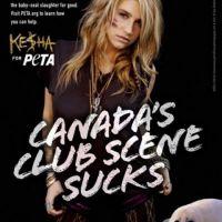 Kesha for PETA ... Son soutien classe et sobre à l'association PETA (PHOTO)