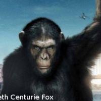 Box Office USA : les singes règnent en maîtres dans les salles