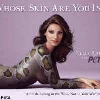Kelly Brook : Elle pose nue en serpent (PHOTO)