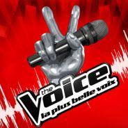 The Voice : La finale devrait se jouer entre Al.Hy et Louis !