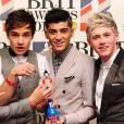 Les One Direction le groupe le plus IN du moment