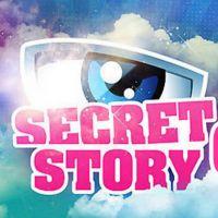 Secret Story 6 : Déjà 2 buzz et 4 secrets grillés !