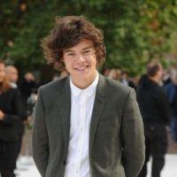 Harry Styles : Taylor Swift déjà remplacée ? Place à la rumeur Billie JD Porter