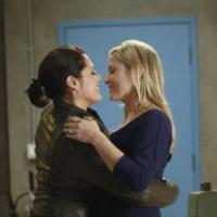Grey's Anatomy saison 10 : quel avenir pour Callie et Arizona ? (SPOILER)