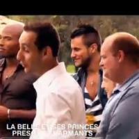 La Belle et ses princes 2 : Gagnant, Medhi en couple avec Nelly ? L'avis de la rédac