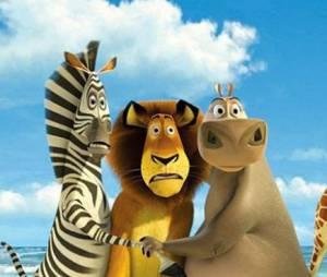 Netflix pourrait diffuser une série sur Madagascar