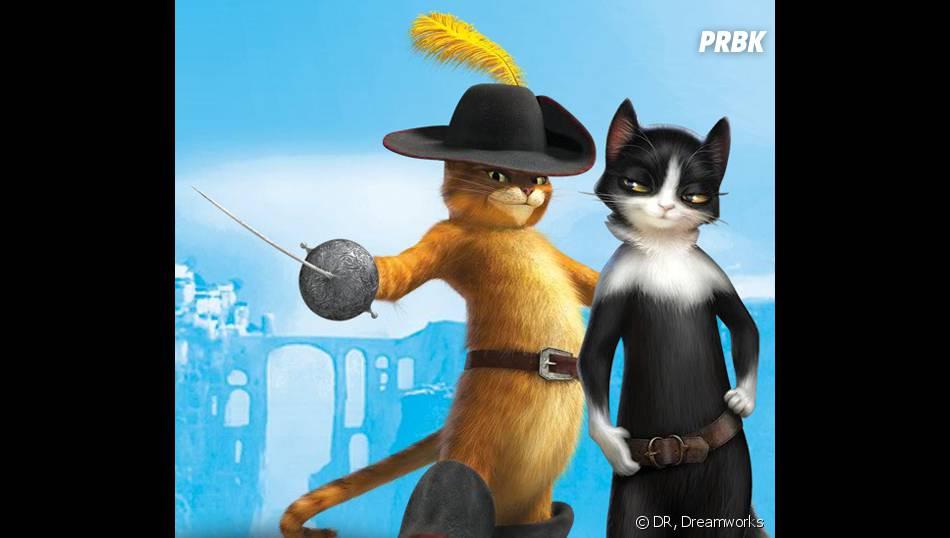 Le chat potté aura-t-il sa série sur Netflix grâce à Dreamworks