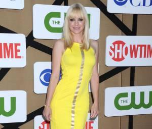 Anna Faris aux TCA's de Los Angeles le 29 juillet 2013