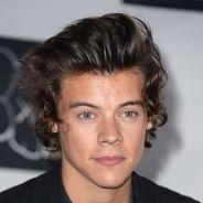 Harry Styles : dîner avec Taylor Swift après les MTV VMA 2013